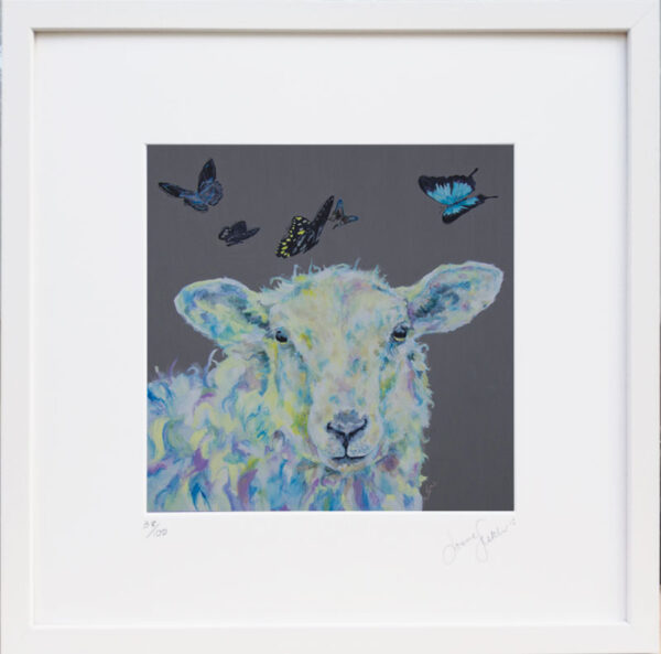 Dreamer Sheep print