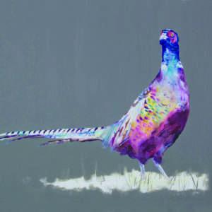 Grand and Proud Pheasant print
